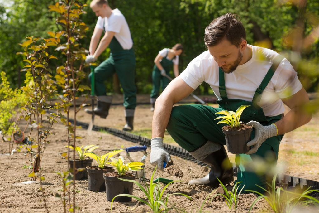 Gartenpflege von Temberger