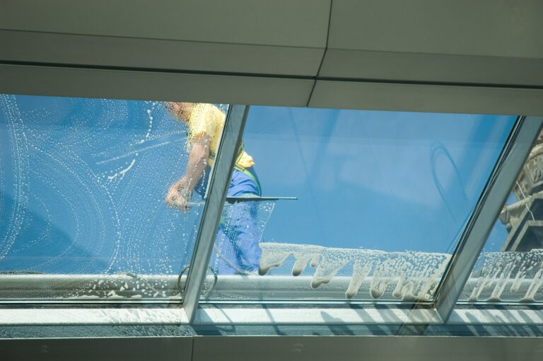 Der Frühjahrsputz enthält auch die Reinigung sämtlicher Glasflächen